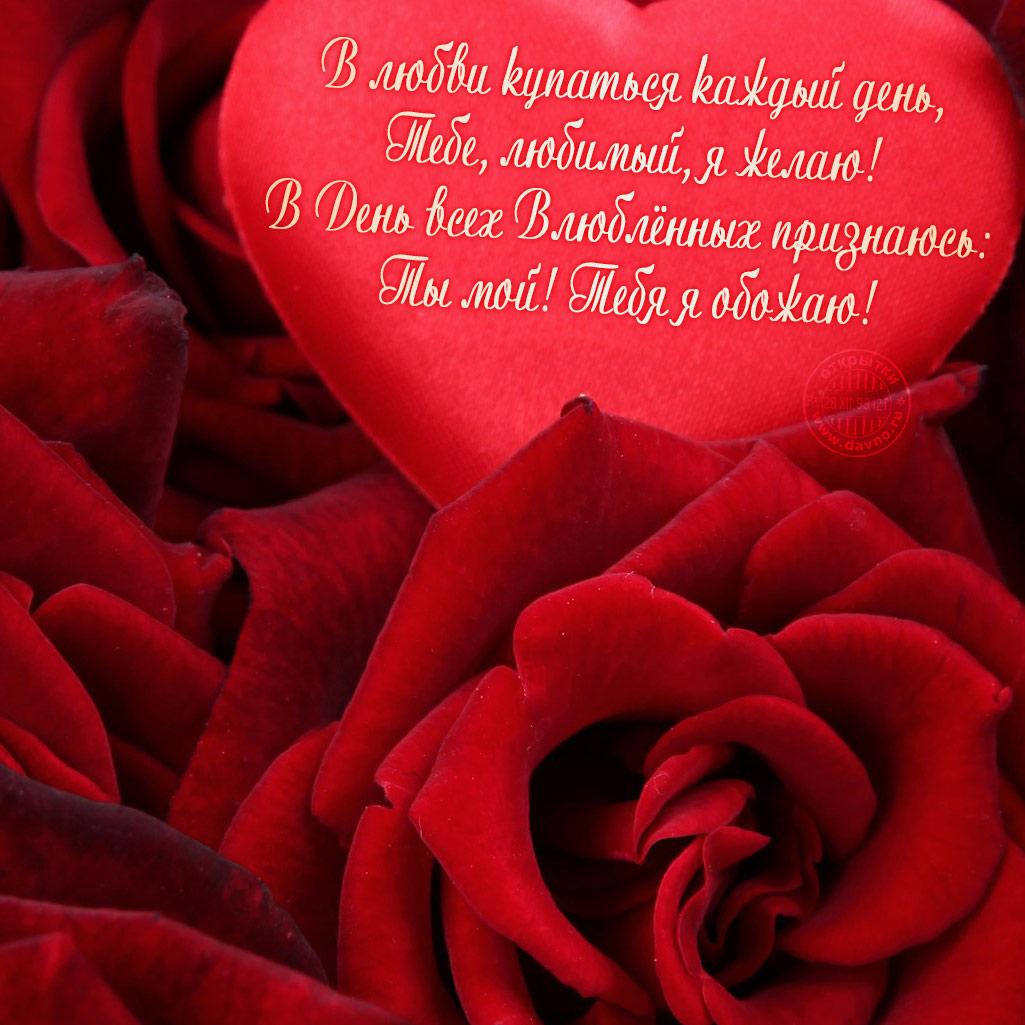 поздравление любимой с валентинкой фото двух россиян